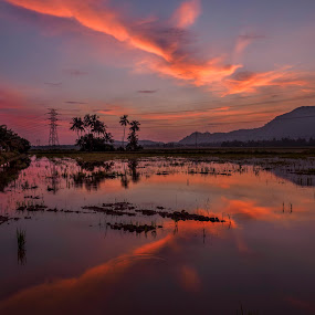 Colourful Mirror Sunrise by Adrian Choo - Landscapes Sunsets & Sunrises ( water, hill, paddy field, colourful, dawn, colorful, trees, reflections, sunrise )