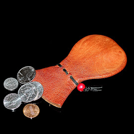 Skippy and Change by Tony Huffaker - Artistic Objects Other Objects ( coins, pouch, money, object, skippy )