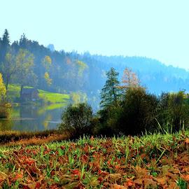Herbstimpressionen by Wechtitsch Bernhard - Nature Up Close Webs