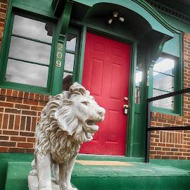 Roar by Candy Ellison - City,  Street & Park  Neighborhoods