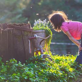 The Smell of Summer by Gary Piazza - Babies & Children Children Candids ( smelling flowers, child, flower pot, sunset, summer, children, sunshin, flowers, toddler, spring )