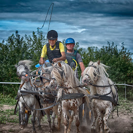 ponyride  by Egon Zitter - Sports & Fitness Other Sports ( horse, sky, contest, ride, pony )