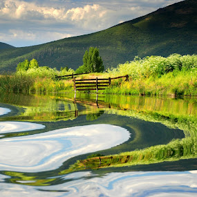 Wake Reflections by Susan Hanson - Landscapes Waterscapes ( renewal, green, trees, forests, nature, natural, scenic, relaxing, meditation, the mood factory, mood, emotions, jade, revive, inspirational, earthly )