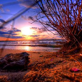 Watching by Derrill Grabenstein - Landscapes Sunsets & Sunrises
