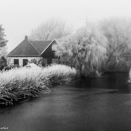 Winter in Holland by Sidney Portier - Landscapes Weather