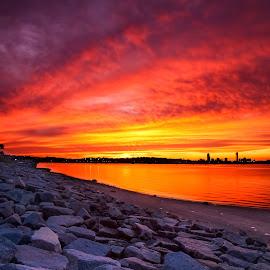Sunset in Boston by Cary Chu - Landscapes Sunsets & Sunrises (  )