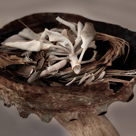 Smudging Bowl  by Abbey Gatto - Artistic Objects Other Objects