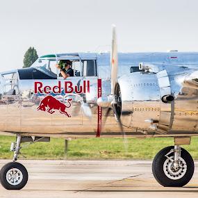 The Mirror by Bogdan Rusu - Transportation Airplanes ( plane, red bull, propeller, show, runway )