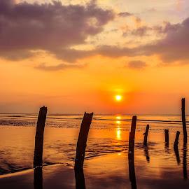 by Joy Advent - Landscapes Waterscapes