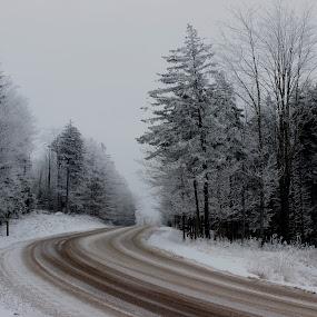 Winter Roadscape by Avishek Bhattacharya - Landscapes Travel ( snowshoe, winter roadscape, west  virginia, snow, silvercreek,  )