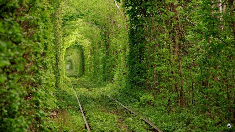 9. Tunnel of Love, Ukraine