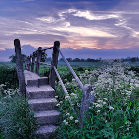by Becky Wheller - Landscapes Sunsets & Sunrises ( footbridge, sunset, landscape, garden, nightscape, filed )