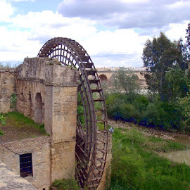 Waterwheel in Cordoba by Barry Lehman - Buildings & Architecture Decaying & Abandoned ( building, architecture, cordoba, spain, abandoned )