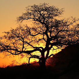 namibia sunset by Dirk de Vos - Landscapes Sunsets & Sunrises