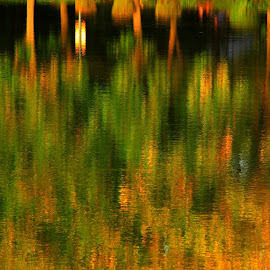 *** by Adriana Petcu - Abstract Patterns ( reflection, nature, abstract, lake, colors )