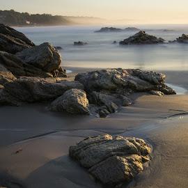 Misty Beach by Etienne van Dam - Landscapes Beaches ( water, sand, sunrise, beach, rocks, misty, golden hour,  )