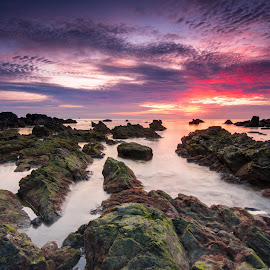 Sunrise from pandak beach by Firdaus Haron - Landscapes Sunsets & Sunrises ( chendering, kuala terengganu, beautiful, pixoto, image, terengganu, malaysia, lee filter, colours, pandak beach, sunset, popular, mossy, hitech, sunrise, rock formation, rocks, filter )