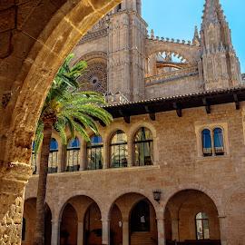 catedral y palacio real, Palma de Mallorca by Roberto Gonzalo Romero - Buildings & Architecture Public & Historical ( palacio real, mallorca, catedral, palma )