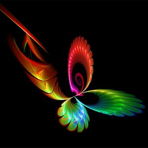 03.31 butterfly.jpg