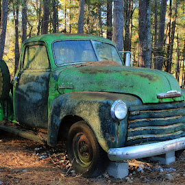 GOING GREEN by Dana Johnson - Transportation Automobiles ( truck, forest, relic, transportation, chevy )