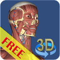 3D Bones and Organs (Anatomy) APK Descargar