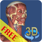 Free 3D Bones and Organs (Anatomy) APK for Windows 8