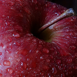 Apple by Pradeep Kumar - Food & Drink Fruits & Vegetables