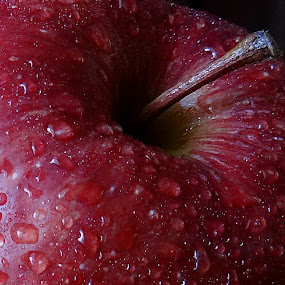 Apple by Pradeep Kumar - Food & Drink Fruits & Vegetables