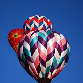 Balloon Trio. by Dee Haun - Transportation Other ( hot air, balloon fiesta, 2007, hot air bollons, albuquerque, triple, three, transportation, balloons, 0645e1, multicolored )