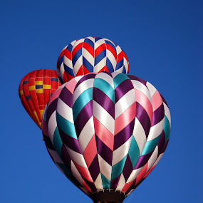Balloon Trio. by Dee Haun - Transportation Other ( hot air, balloon fiesta, 2007, hot air bollons, albuquerque, triple, three, transportation, balloons, 0645e1, multicolored,  )