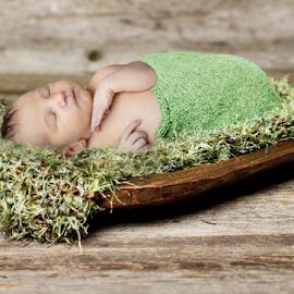 Fresh out by John Cuthbert - Babies & Children Babies ( love, new, turf, born, girl, hope, bowl, boy, props, grass, baby, garden, fresh, landscape )