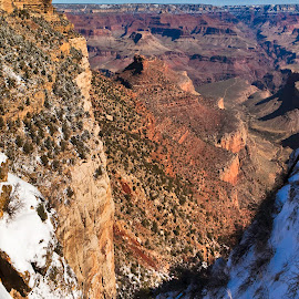 View from Bright Angel Trail by Steven Love - Landscapes Travel ( famous, park, bright, national, land, steep, sandstone, snowy, landscape, frozen, grand canyon, angel, landmark, walls, cold, trail, snow, vista, view )