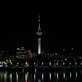Sky Tower Skyline at Night by Karina Zawilinski - City,  Street & Park  Skylines ( sky, reflection, night, skyline, tall, lights, tower )