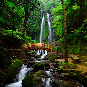 Karanganyar by Hendri Suhandi - Landscapes Forests ( waterfall, java, forest, travel, karanganyar )