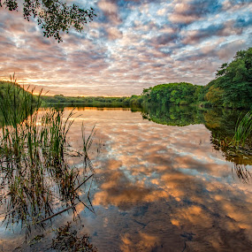 Morning reflections by Graham Kidd - Landscapes Waterscapes ( clouds, water, green, trees, reflections, sunrise )