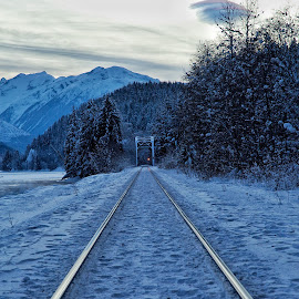 CNR line near the Zymoetz river crossing, Terrace BC. by Todd Bellamy - Transportation Trains ( winter, railway, snow, tracks, trains,  )
