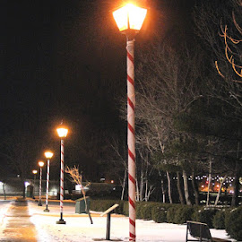 Candy Cane Lamp Posts by Lena Arkell - City,  Street & Park  Night ( winter, park, snow, lamp, night, street lamp, black, sidewalk,  )