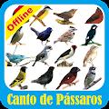 App Canto de Pássaros Brasil APK for Windows Phone