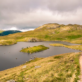 Roman Road by Darrell Evans - Landscapes Mountains & Hills ( water, countryside, clouds, hills, uk, cumbria, tarn, grass, green, stone, lake, vegetation, landscape, lake district, island, mountains, sky, outdoor, angle tarn, rocks )
