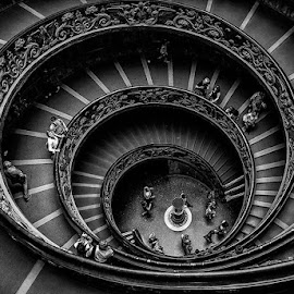 Spiral of Life by Rui Lopes - Buildings & Architecture Other Interior ( stairsspirallines )