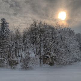 Wooden cottage by Rado Krasnik - Landscapes Forests ( winter, cottage, snow, trees, woods )