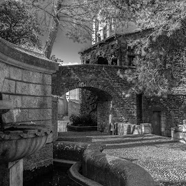 paseo arqueologico, Girona (game of thrones location) by Roberto Gonzalo Romero - Buildings & Architecture Public & Historical ( girona, black and white, arqueologico, paseo, game of thrones )