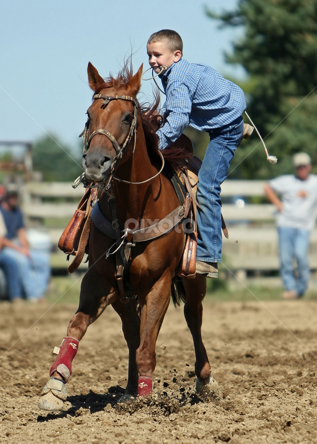 by Ron Swarts - Sports & Fitness Rodeo/Bull Riding ( barrel racing, rodeo )