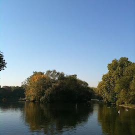 Regent's Park by Serguei Ouklonski - City,  Street & Park  City Parks ( water, sky, park, tree, london, trees, lake, landscape, regent's park )