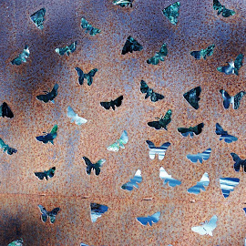 Butterflies by Sarah Harding - Novices Only Objects & Still Life ( sculpture, nature, still life, outdoors, novices only )