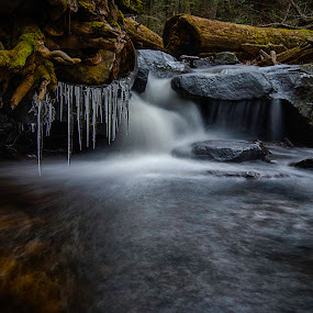 Frozen Purity by Jason Weagle - Landscapes Waterscapes ( hdr )