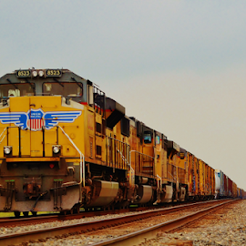 UP 8523, 4019, 6932  7723 by Jim Suter - Transportation Trains (  )
