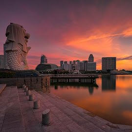 by Gordon Koh - City,  Street & Park  Vistas ( sunrise, reflection, city, asia, city park, fullerton, clouds, building, merlion, singapore, modern, urban, symmetry, cityscape, hotel, modern city, movement, esplanade, blue hour, park, architecture, mbs )