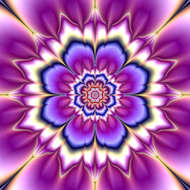 Flower 16 by Cassy 67 - Illustration Abstract & Patterns ( love, abstract, digital art, bloom, flowers, fractal, light, digital, fractals, energy, floral, flower )