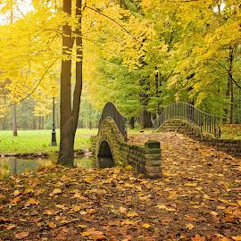 By bridge by Witold Steblik - Buildings & Architecture Bridges & Suspended Structures ( nature, park, autumn, bridge, landscape )